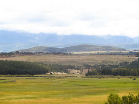 green meadows: Boundless green meadows Stock Photo