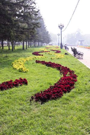 flower patterns: Flower patterns in city park Stockfoto