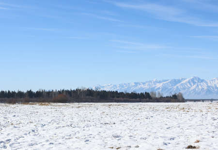 snowfield: Snowfield in the mountains