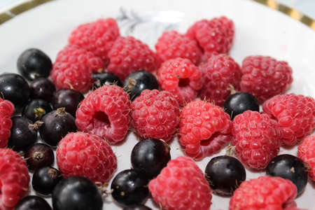 currants: Raspberry and currants Stock Photo