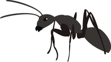Black ant Stock Vector - 8275890