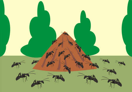 ant hill Vector