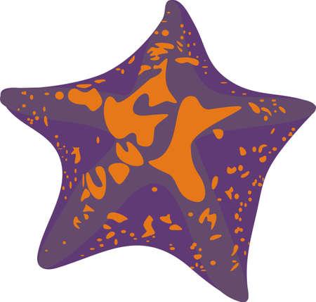 feelers: Estrella de mar
