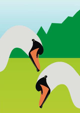 Wild swans Stock Vector - 9127814