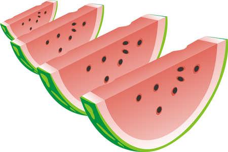 segment: Water-melon segment Illustration