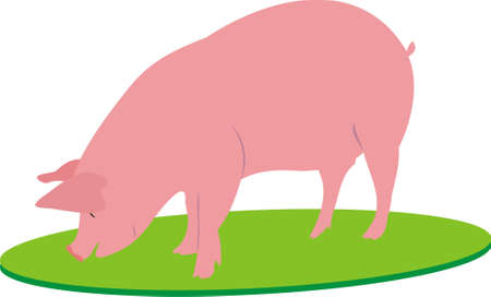 The big pig Stock Vector - 9637161