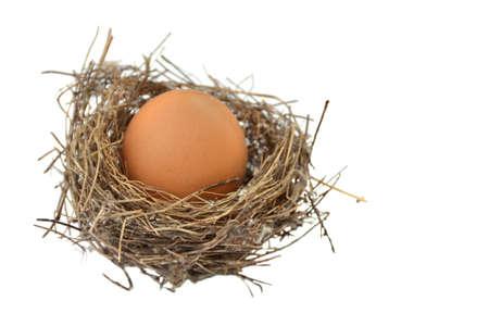The birds nest Stock Photo