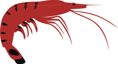 The big shrimp Illustration