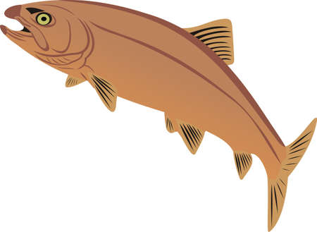 Rare fish Stock Vector - 11861950