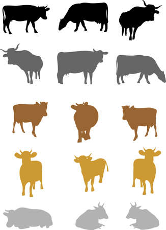 Cows on a white background Stock Vector - 14164331