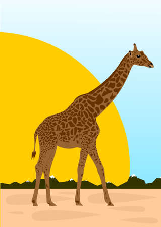 Big giraffe Stock Vector - 14605316