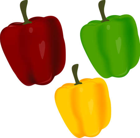 Sweet pepper Stock Vector - 17482927