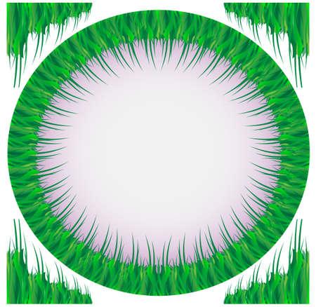 Quadro de uma grama verde