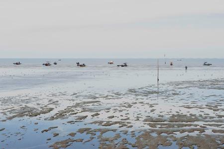 wide wet: Mud shore seascape wet land in outdoor. Stock Photo