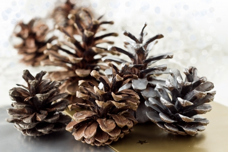 Christmas pine cone painted in silwer and white on the white background  Stock Photo