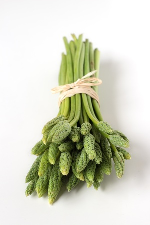 A bunch of wild wood asparagus isolated on white background photo