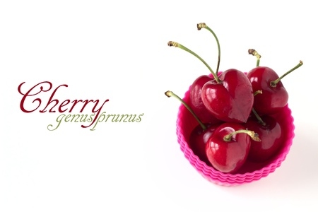 Cherries in pink cupcake mold isolated on white background