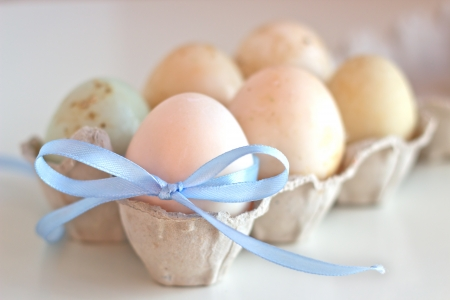 Duck eggs in a carton pack on white background