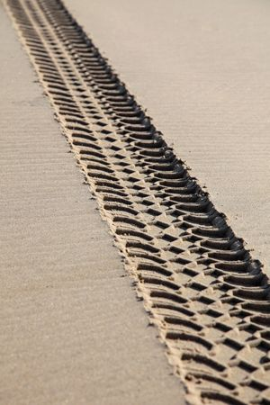 Vehicle tracks on a beach damaging the environment. photo