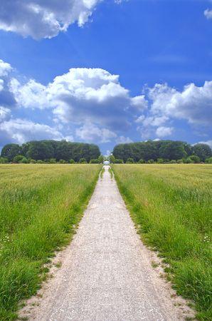 pfad: Eine weit offen Wanderweg an einem gl�nzenden hellen Tag.