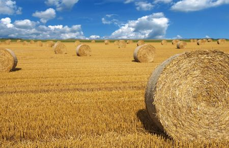 Korn: A wide open field showing some bales of straw. Stock Photo