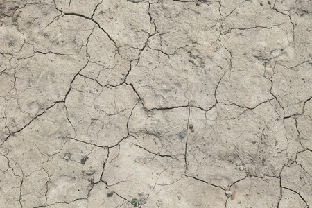 the ground: Background texture of a flawed dried out ground.