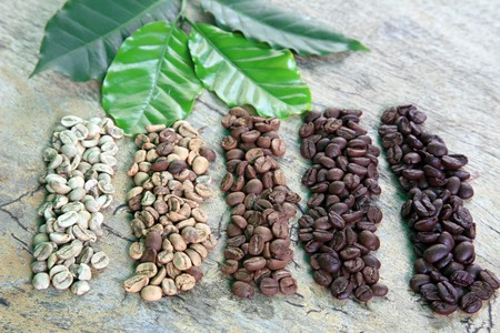 coffee coffee plant: Coffee beans in different roast levels on rustic wooden board Stock Photo