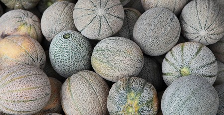 market stall: Market stall offering melons
