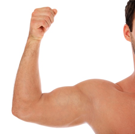 Heavily muscled upper arm of a man. All on white background.  photo