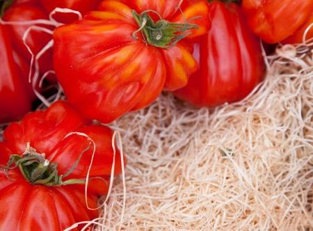 tomatos: Fine ripe tomatos at market stall