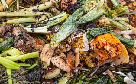 desechos organicos: Pila de fondo de los residuos org�nicos