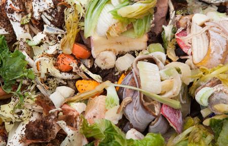 desechos organicos: Los residuos org�nicos en el bote de basura Foto de archivo