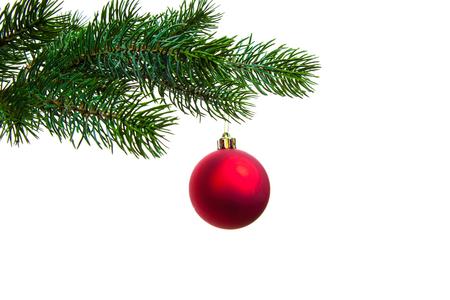 Christmas ball on twig of evergreen 免版税图像