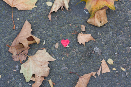 Red heart on concrete ground with autumnal leaves 免版税图像