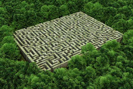 Bird's eye view of labyrinth in the forest