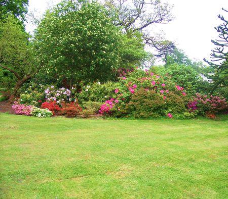 jardín en exhibición en los jardines Exbury (Reino Unido)