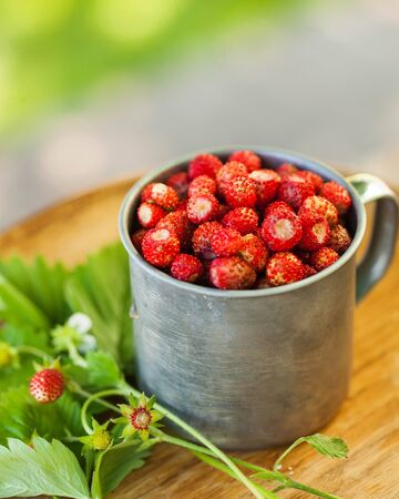 Forest strawberries in a metal Cup on a wooden tray. Concept of berries, walking in the forest, summer. High quality photo