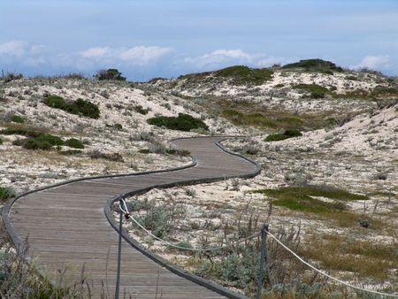 Snaky walkway in the dunes Stock Photo