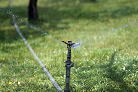 Sprinkler watering lawn on summer day