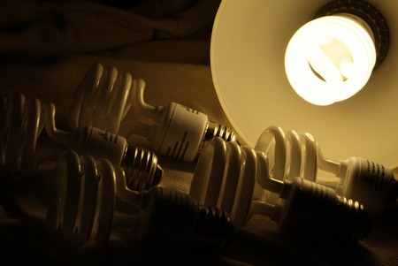 compact Fluorescent lamp glowing on several light bulbs