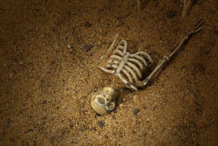Spooky Buried Skeleton bones photo