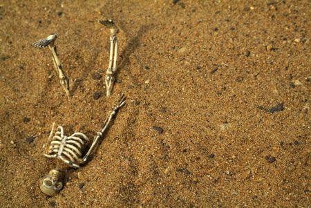 bury:  Skeleton bones buried in the sand Stock Photo