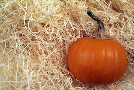 Orange Pumpkin background Stock Photo - 3918490