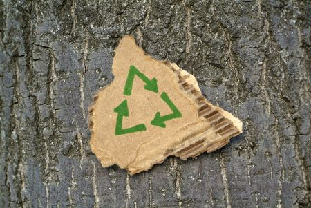 Recycled cardboard surrounded by tree bark. Stock Photo