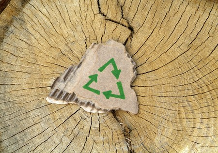 Recycling symbol on cardboard on top of cut down tree  Stock Photo