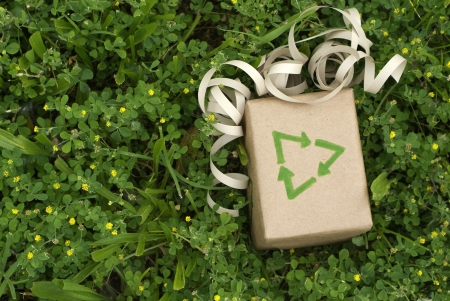 Eco friendly gift wrapped in recycled paper surround by green plants photo