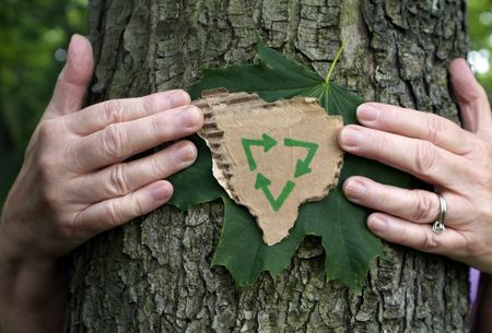 Environmental Person hugging tree holding green leaf and recycled eco cardboard with recycle symbol on it.
