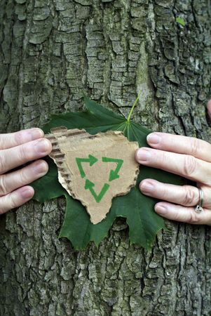 Environmental conservation concept: Hands holding green leaf and recycling symbol on recycled cardboard while hugging a tree Stock Photo