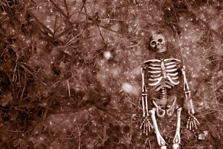 Creepy halloween skeleton background photo