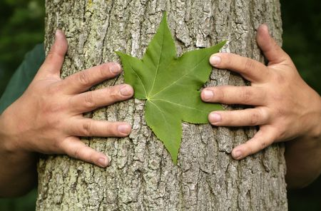 environmentalism: Earth Day Concept: Eco minded person hugging a tree with a green leaf between their hands. Stock Photo